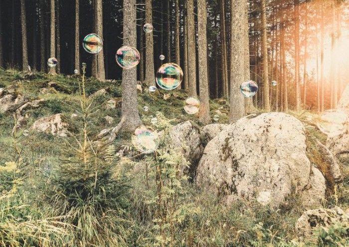 Обрывки сновидений. Marlies Plank (фотограф)