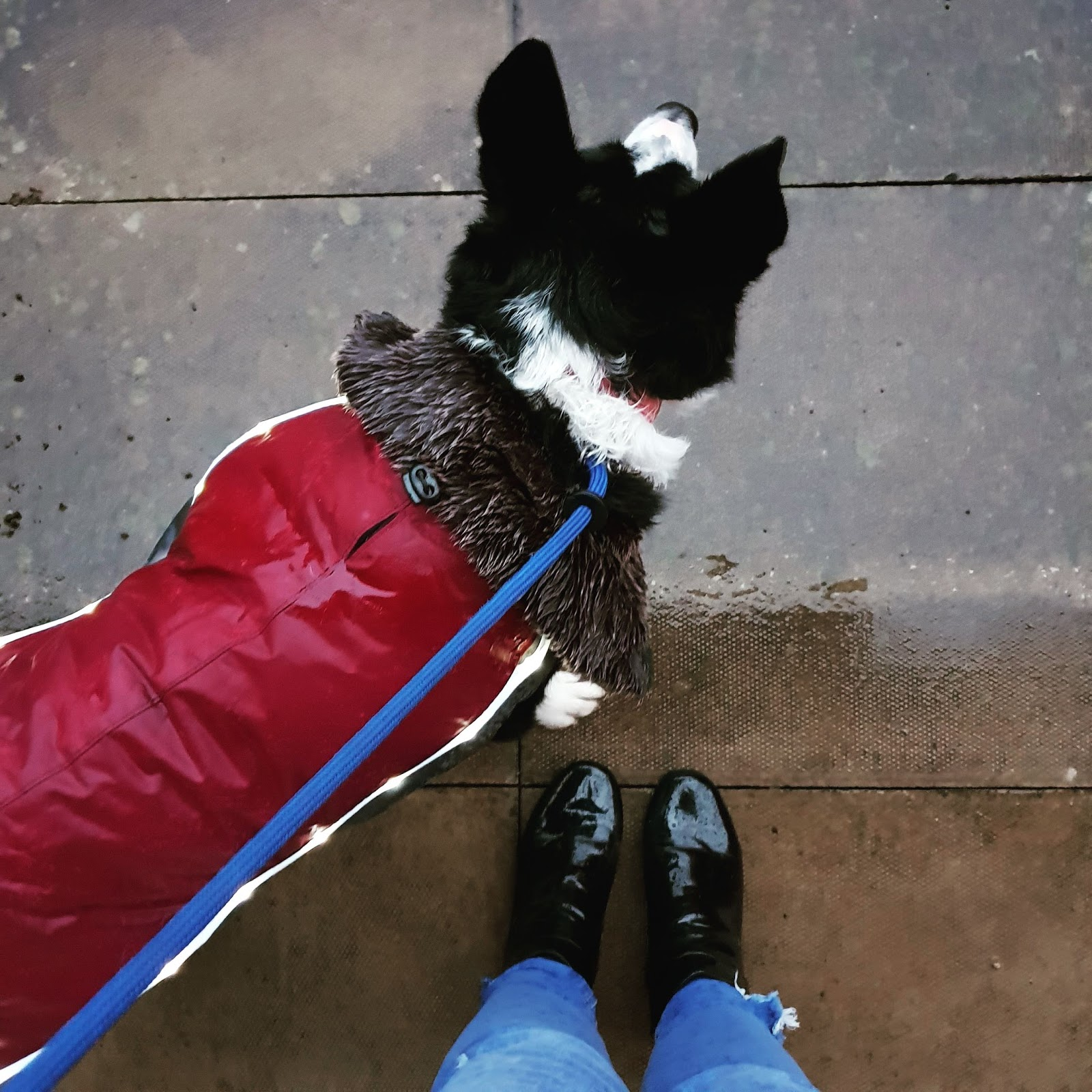 Wet And Windy Winter Wear