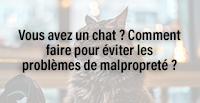 Vous avez un chat ? Comment faire pour éviter les problèmes de malpropreté ?