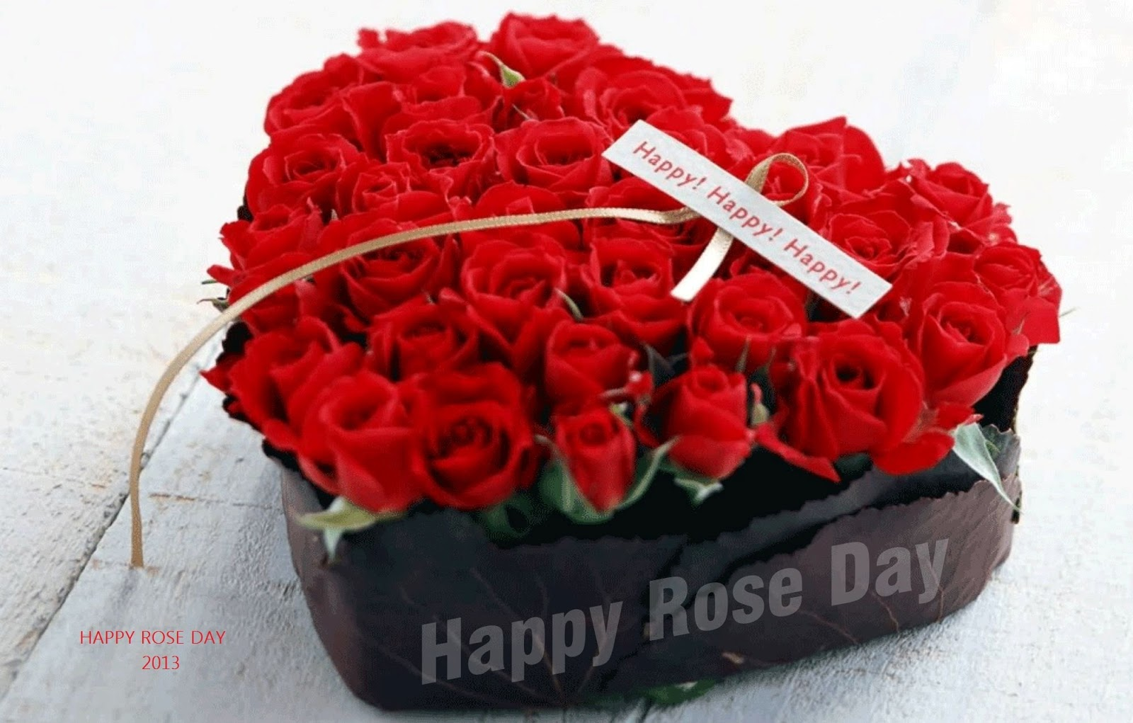 rose day images for friendship