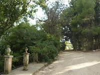 Paseo 1