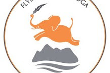 Flying Elephant Yoga Recruitment for a great Office Administrator