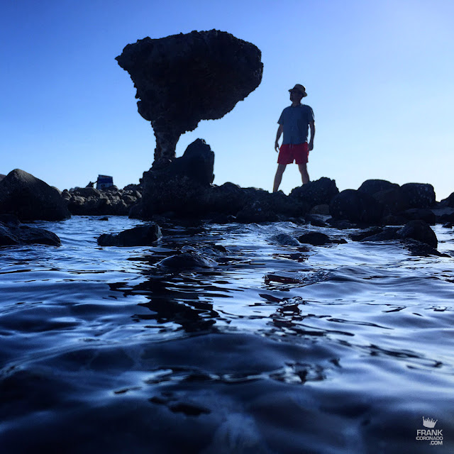 hongo de playa balandra en la paz