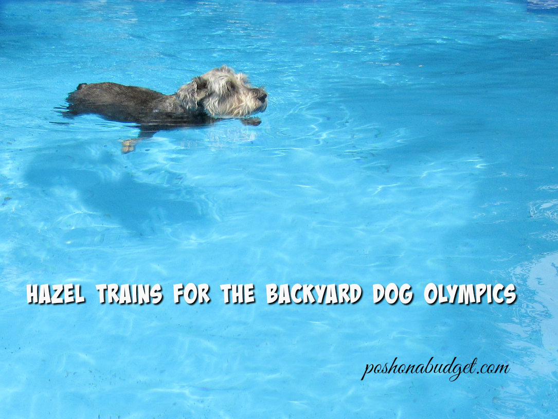 Training for the Backyard Olympics #ad