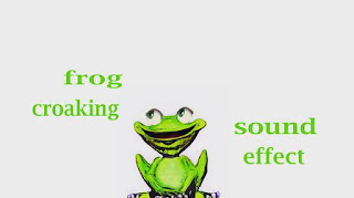 how frog sounds