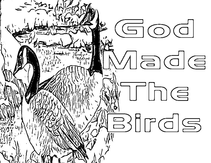 Children's Gems In My Treasure Box: God Made The Birds