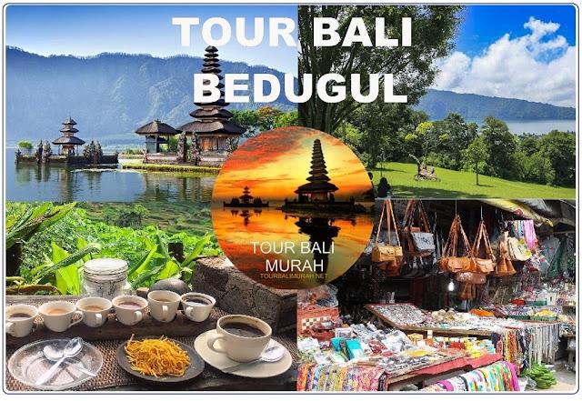 TOUR BALI BEDUGUL
