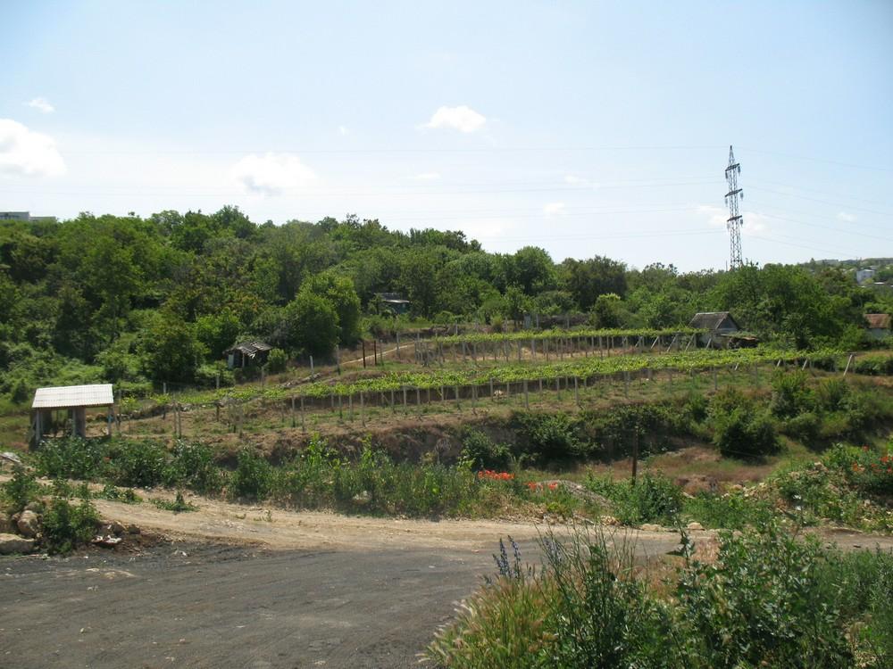 Вывоз выгребных ям Севастополь