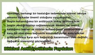 Bitkisel Antibiyotiklerin Faydaları