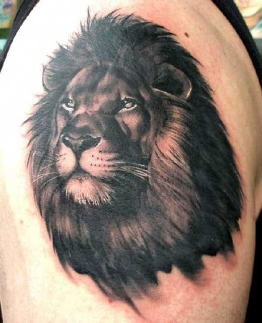 Tatuajes Del Poderoso León Un Rey De Los Tatuajes Belagoria La
