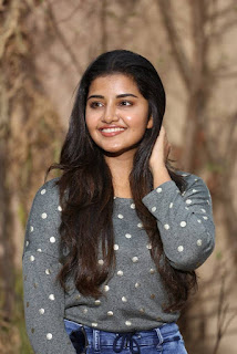 Anupama CC Creations Movie On Location Press Meet Stills 10