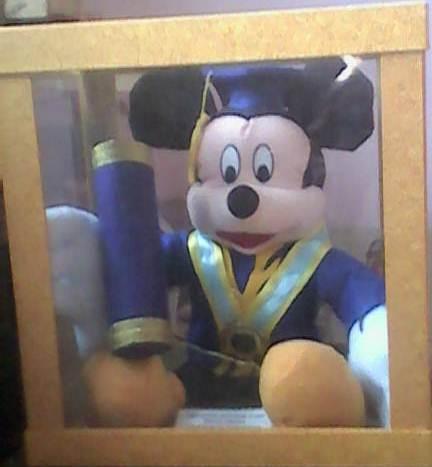 Boneka Wisuda Mickey Mouse   Toko Online Bantal Handmade  1db2181717