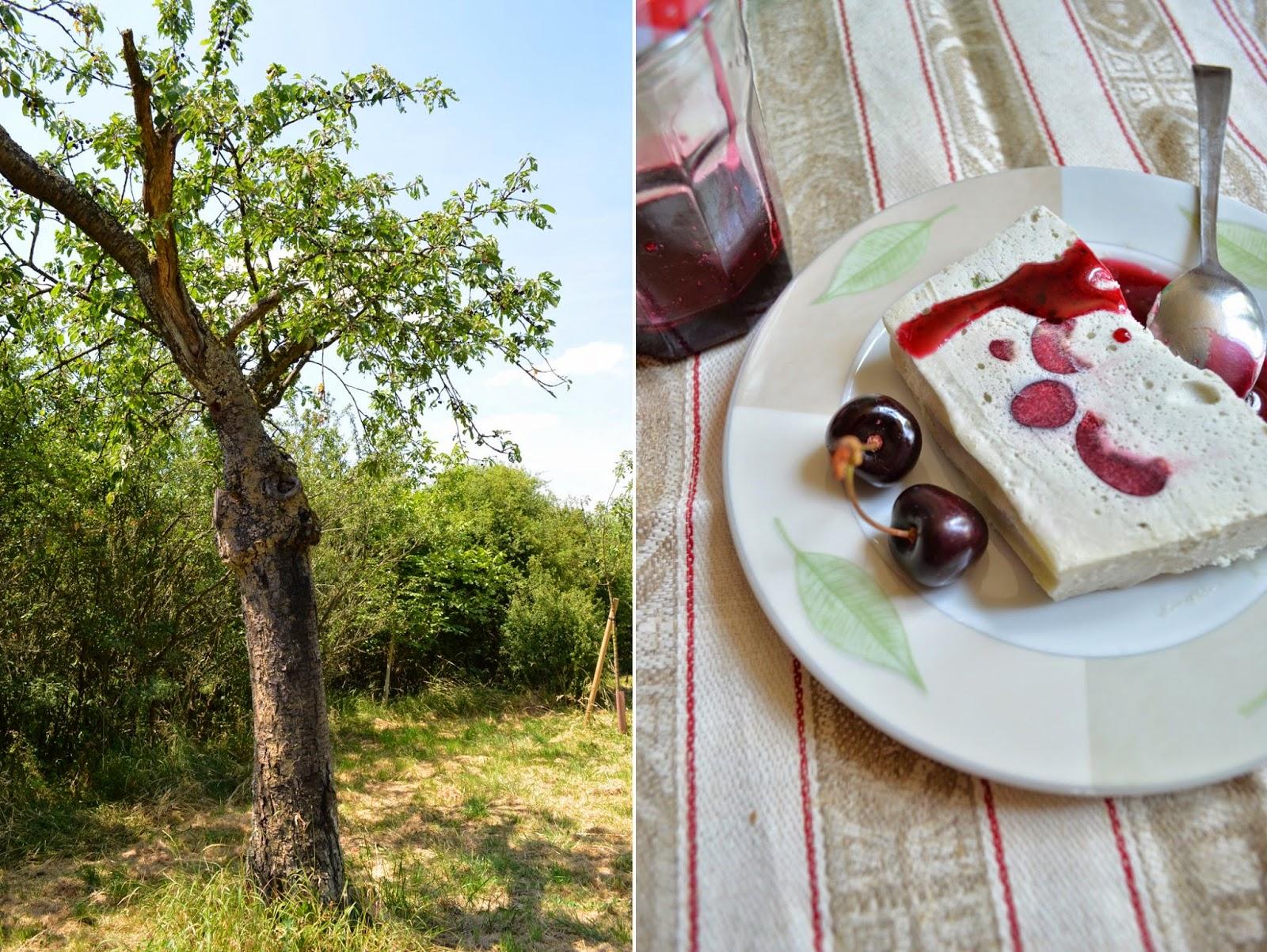Semifreddo fruits rouges-menthe