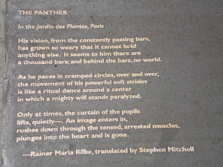 Sidewalk Poetry in Berkeley  (c) 2012 by Maja Trochimczyk
