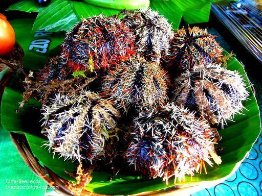 Sea urchin sold at baywalk in Puerto Princesa City