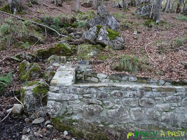 Ruta Torre Bermeja:Fuente en el bosque