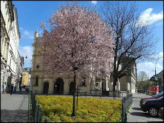Wiosna 2015 Kraków - Kazimierz