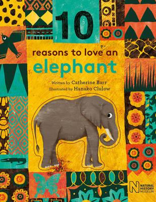 Kids Book Review Review 10 Reasons To Love A Turtle And 10