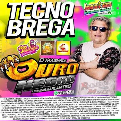 CD TECNO BREGA 2008 - O MAGNÍFICO - OURO NEGRO - A FERA DAS MARCANTES