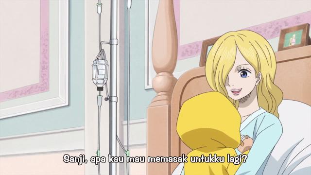 One Piece Episode 804 Subtitle Indonesia