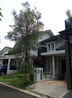jual rumah bintaro 9