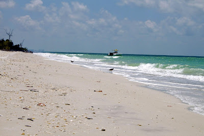 Naples And Bonita Springs Have Some Of The Most Beautiful Unspoiled Beaches In All Florida It S One Reasons Why People Visit From Over