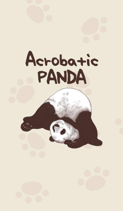Acrobatic Panda