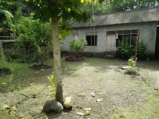 Tanah Dijual Cepat Wates Kulonprogo Yogyakarta Bonus Bangunan 3