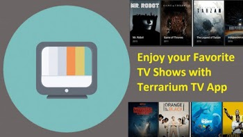 Popular pirate app Terrarium TV shuts down