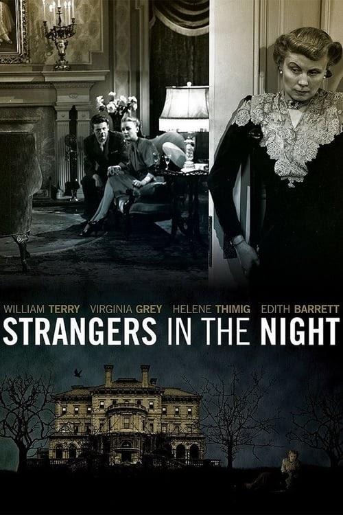 Stranger In The Night På Svenska