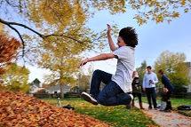 http://awakenings2012.blogspot.com/2014/09/falling-leaves-of-autumn.html
