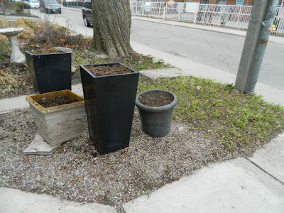 Toronto Parkdale front garden spring clean up after by Paul Jung Gardening Services