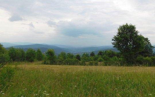 Widok z Gołuszkowej Góry na dolinę Błądzonki.