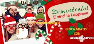 Logo Acqua&Sapone ti fa vincere buoni spesa da 100 euro e un viaggio in Lapponia