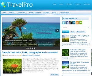 TravelPro 2 Column Blogger Template