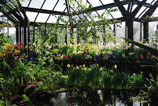 Ботанический сад Глазго (вход бесплатный)
