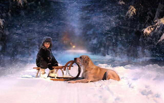 Jongen met hond in de sneeuw