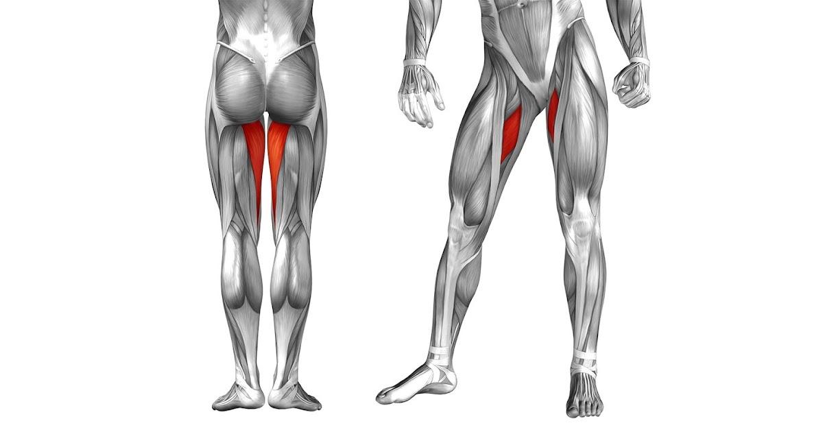Болит прямая мышца бедра после футбола