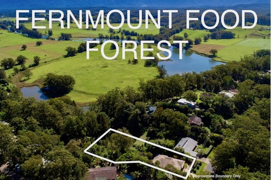 Fernmount Food Forest