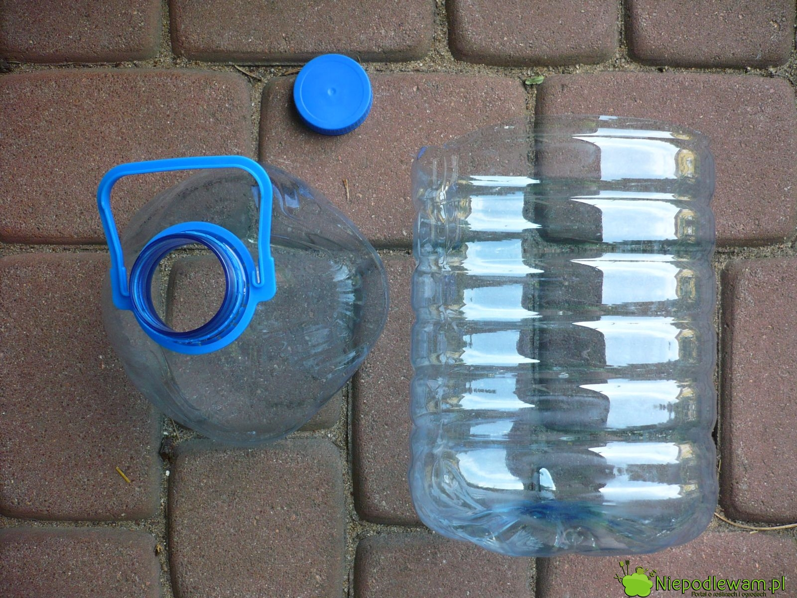 Niepodlewam Doniczki Z Butelek Plastikowych Jak Zrobić