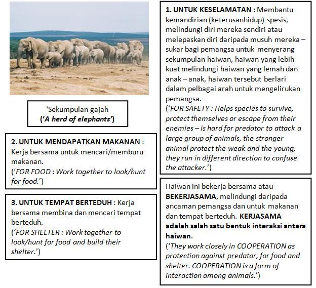 Sains Best Sesetengah Haiwan Hidup Berkumpulan Dan Sesetengahnya Hidup Bersendirian Bah 2