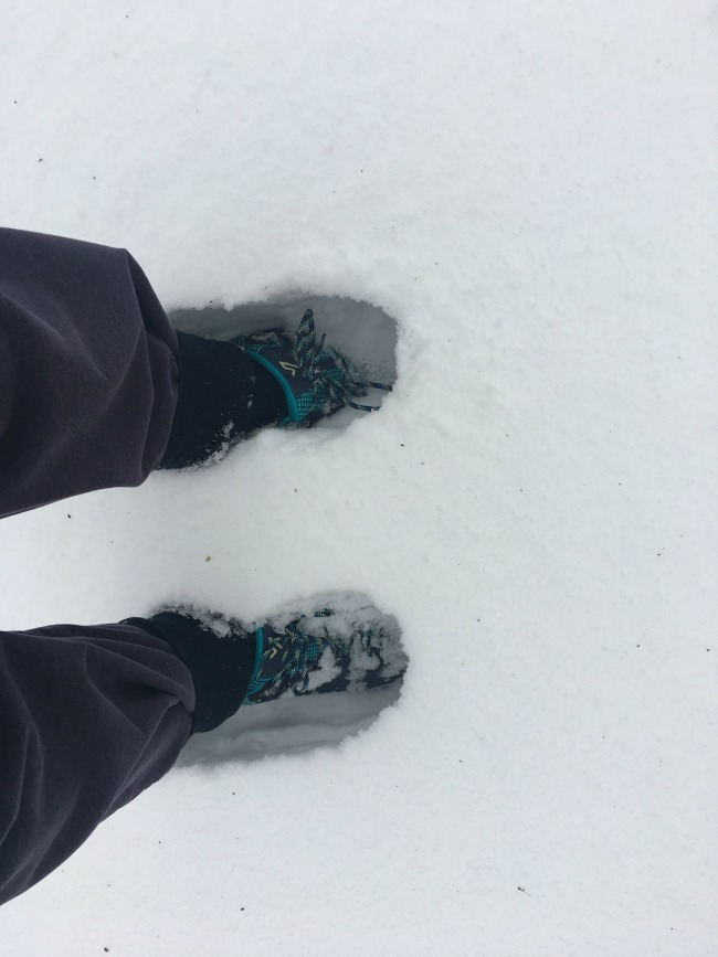 our-weekly-journal-the-beast-from-the-east-brings-snow-image-of-feet-in-blue-boots-in-two-feet-of-snow
