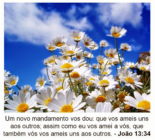 Mensagens De Fé Da Palavra De Deus: Mensagem Evangélica De