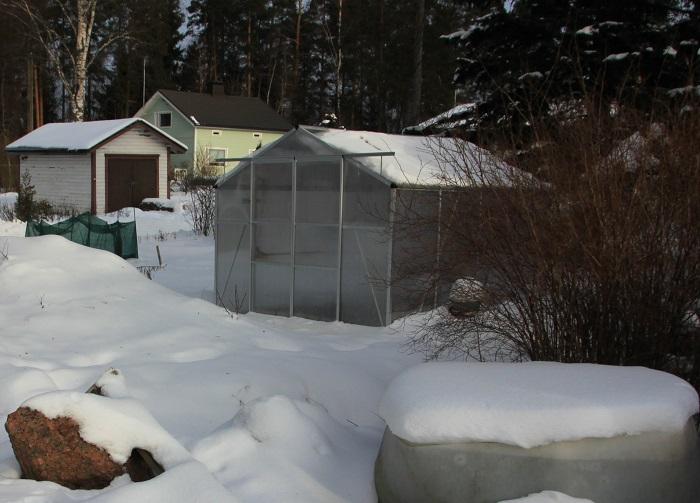 Kasvihuone vadelmien talvisuojaus