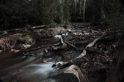 Near Silverband Falls