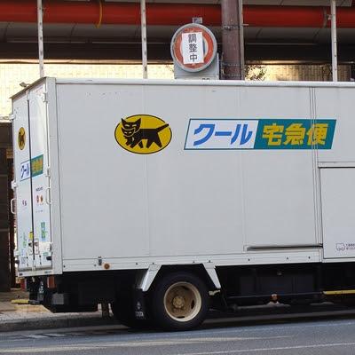 Japanisches Logo mit Katze