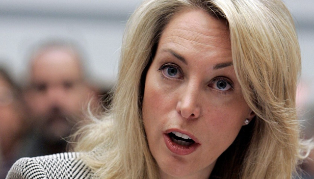Valerie Plame, the former CIA operative who was at the center of an intelligence leak when her identity was publically revealed during the George W. Bush administration, plans to run for a U.S. Senate seat in New Mexico as a Democrat, according to reports