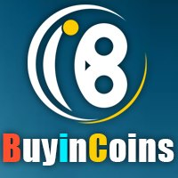 buyincoins review