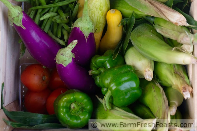 a typical summer Community Supported Agriculture (CSA) farm share box