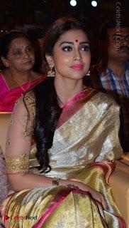 Actress Shriya Saran New Images in Silk Saree at Gautamiputra Satakarni Audio Launch  0013.jpg